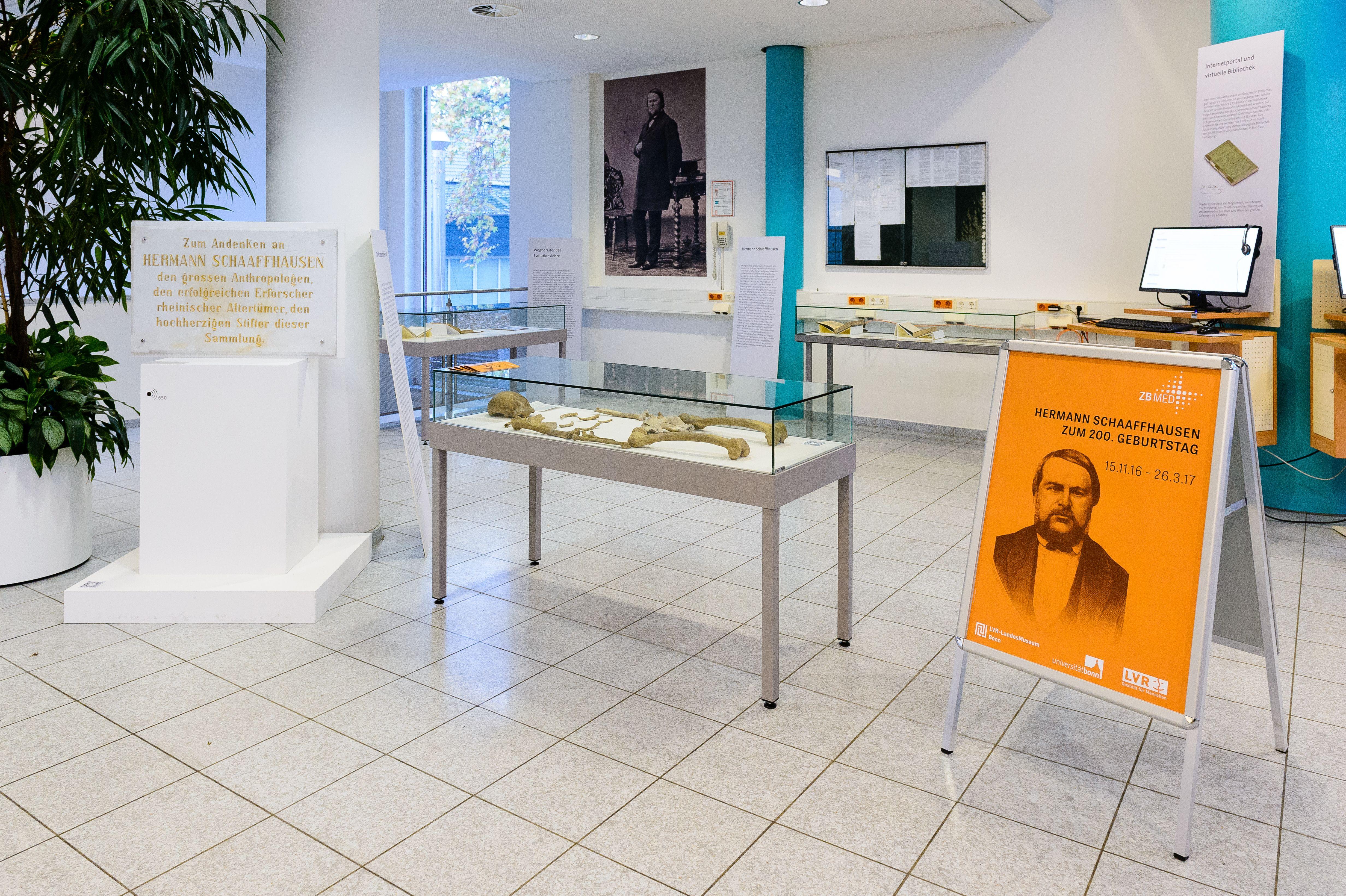 """Read more about the article """"Hermann Schaaffhausen zum 200. Geburtstag"""" – Vortrag zur Ausstellungseröffnung"""